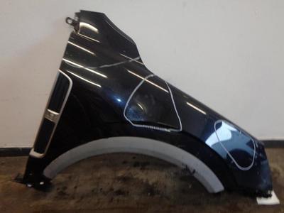 Antara Drivers RH Front Wing Carbon Flash Paint Code GAR